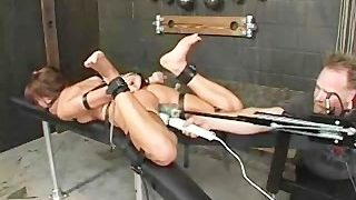 Holly Wellin Hog-Tied und wild gefickt